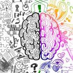 عملکرد مغز نوجوانان چگونه است؟
