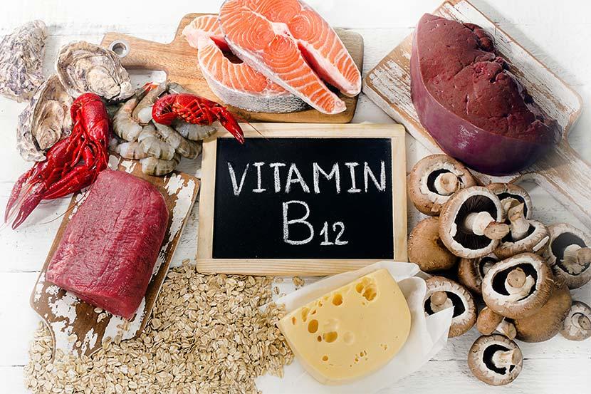 منابع دریافت ویتامین B۱۲